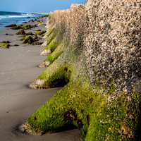 Fort Fisher, NC-0118.jpg